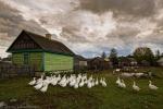 1. Życie codzienne w wioskach przy Bagnach Olmańskich