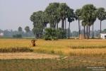 Biharska wieś